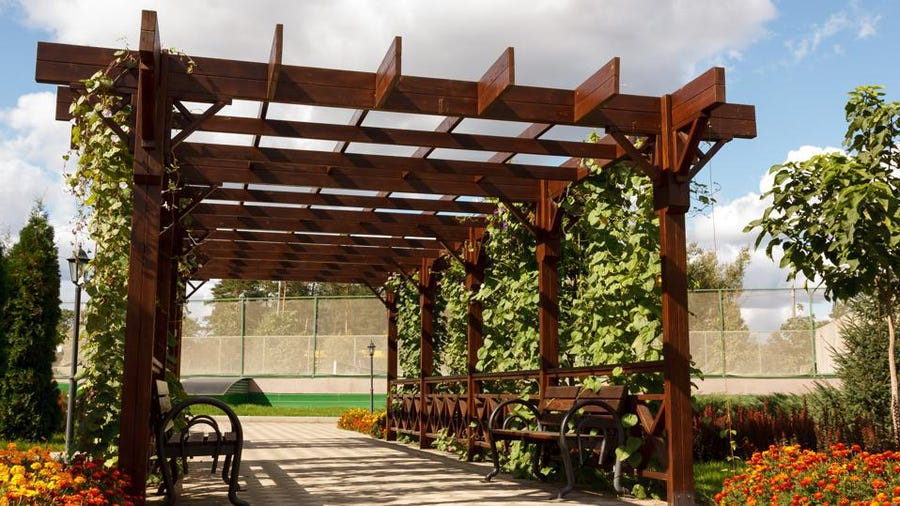 Pergola je moderna rešitev za zasenčitev vrta