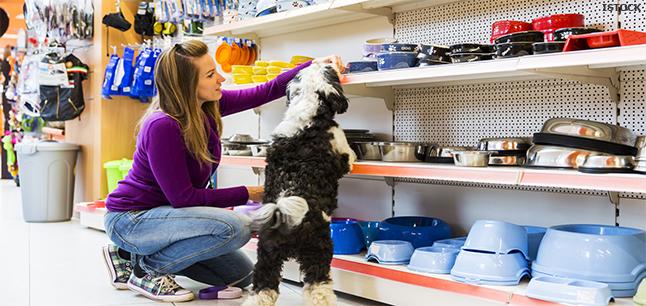 Trgovina za male živali dobro poskrbi za našega ljubljenčka
